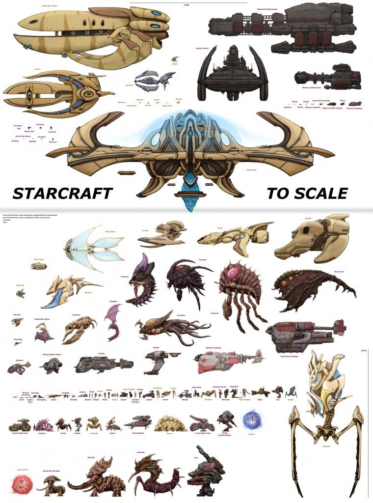스타크래프트 유닛 크기 비교